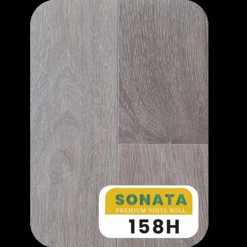 sonata-03 copy